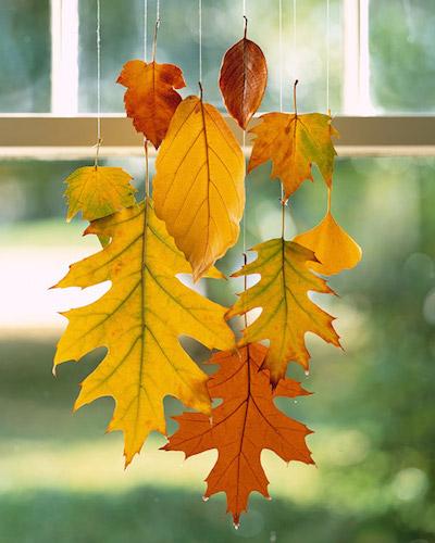 Гирлянды из осенних листьев картинки