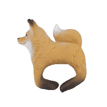 ROB THE FOX